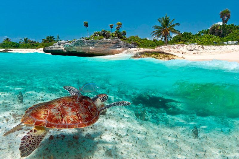 куда поехать летом на море - Мексика