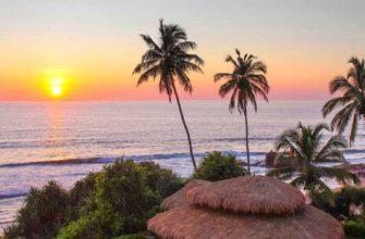 Шри-Ланка открывается для вакцинированных туристов
